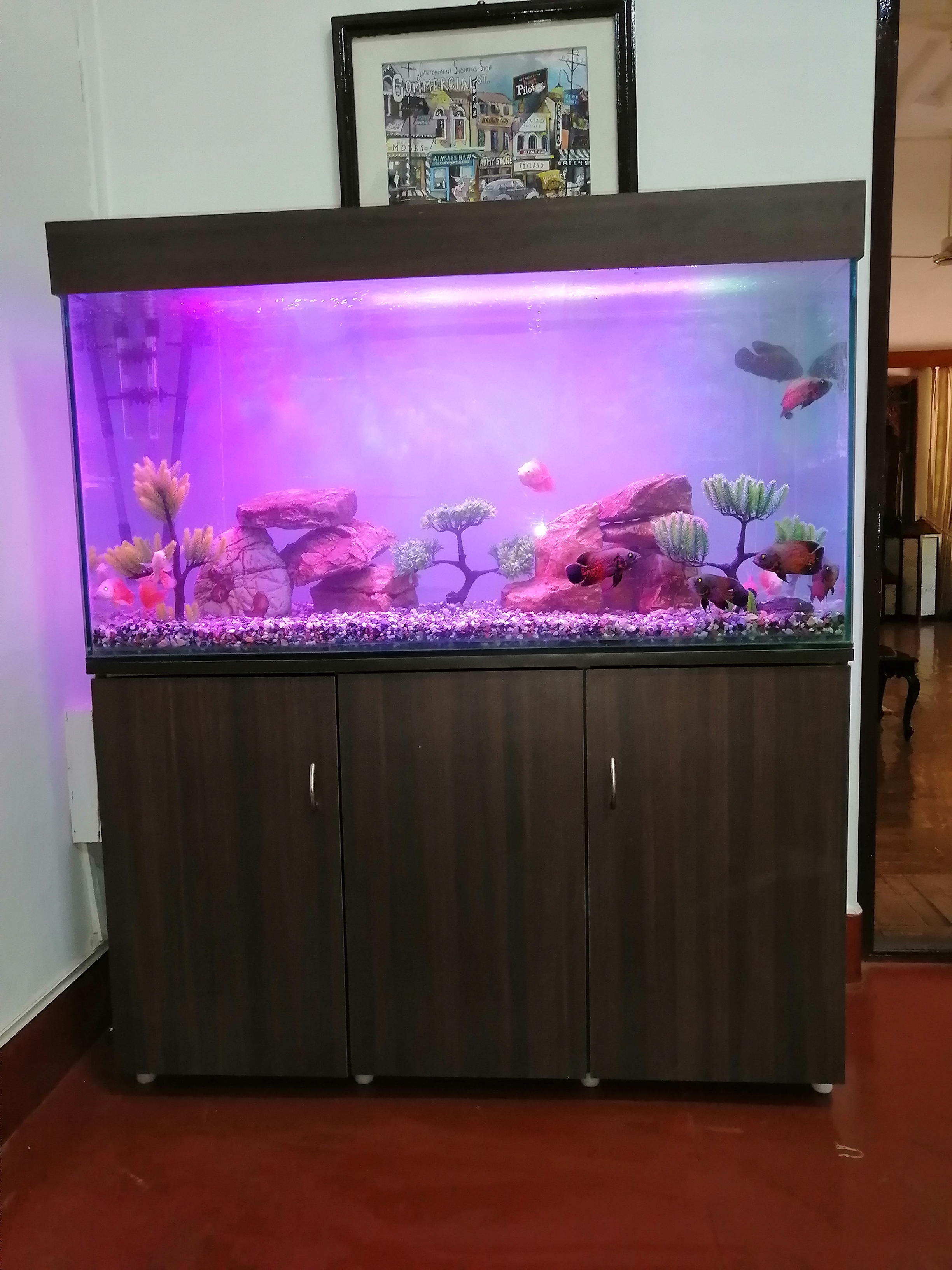 4 feet L * 2 Feet hight * 18 inch Width Custom Made Toughened Glass Aquarium, with custom made cabinet and top cover
