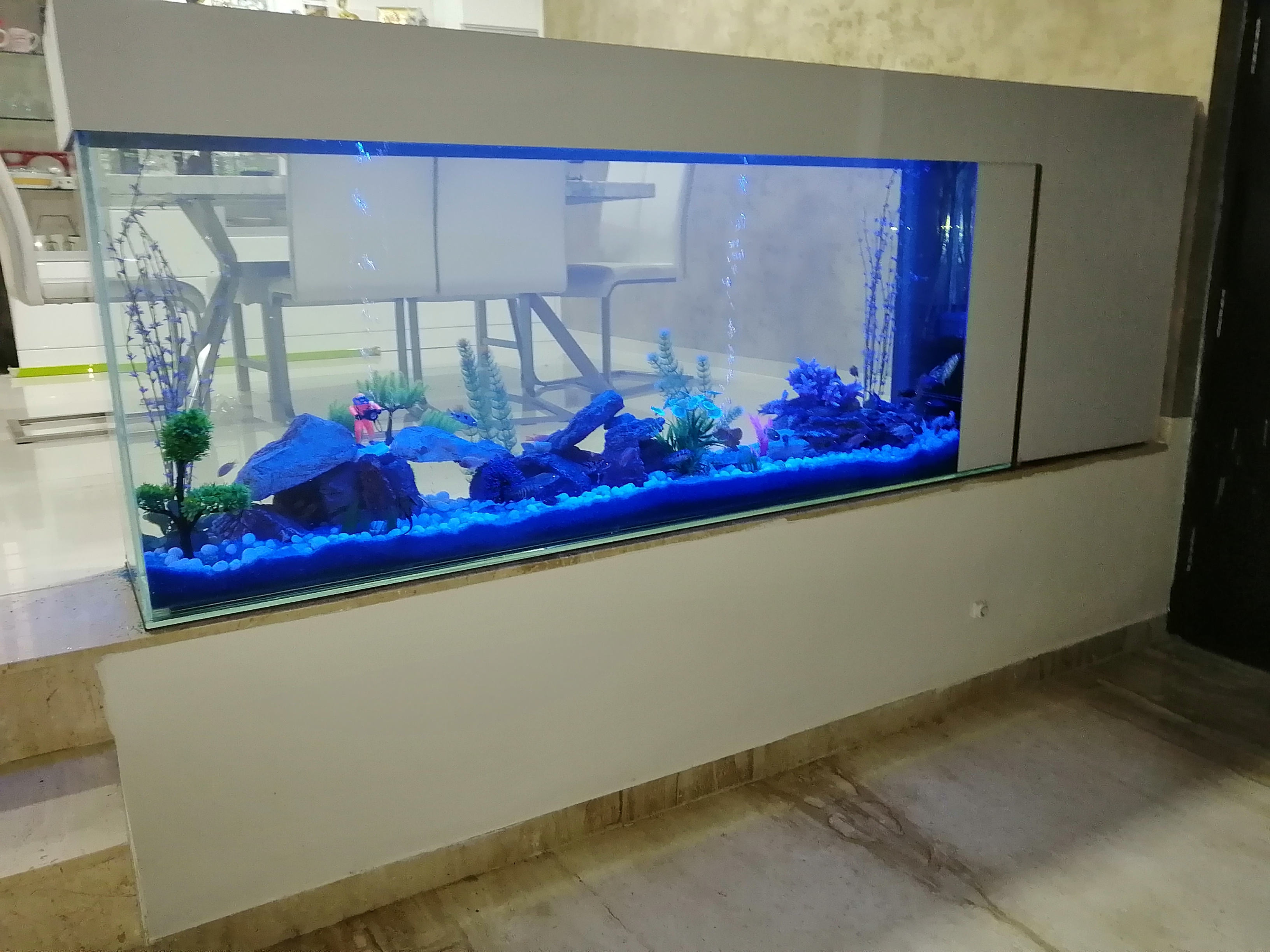 6 feet L * 2 Feet hight * 15 inch Width Custom Made Extra Clear Toughened Glass Aquarium, with custom made cabinet and top cover